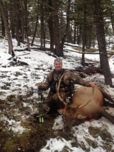 Archery Elk Season, bow hunting season montana